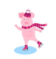 funny pig in a hat with a bushy pompon and a scarf vector image vector image
