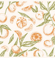 seamless citrus pattern with whole mandarins vector image