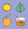 set of detox recipe icons vector image