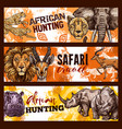 african safari hunting sketch banners with animals vector image vector image