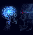 brain for medicine a skull vector image vector image