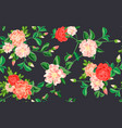 camellia pattern cartoon style vector image