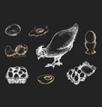 graphic poultry farm goods vector image