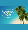 summer sale vacation banner with tropical beach vector image