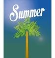 palms tree beach vector image