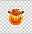 bitcoin cryptocurrency coin icon of virtual vector image