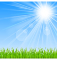 background with a blue sky sun and green grass vector image