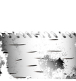 bark birch frame vector image vector image