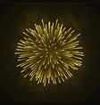 beautiful bright firework isolated on black vector image vector image