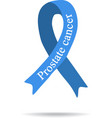 Cancer Ribbon Prostate cancer International Day vector image vector image