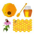 set of beekeeping elements beehive vector image