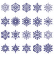 snowflakes collection isolated on dark background vector image vector image