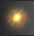transparent glow light effect star burst with vector image