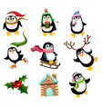 pingvi vector image