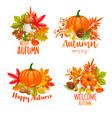 seasonal hello fall banners vector image vector image