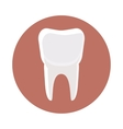 White tooth icon cartoon style vector image vector image
