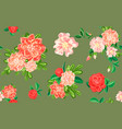 camellia flower pattern cartoon style vector image