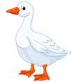 Cartoon goose vector | Price: 1 Credit (USD $1)
