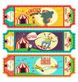 circus ticket design vector image