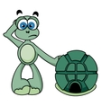 Cute Turtle vector image vector image