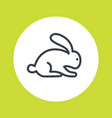 rabbit line icon isolated on white vector image vector image