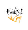 thankful lettering on white background vector image vector image