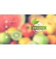 Organic food web interface blurred design vector image