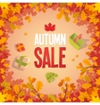 Autumn sale advertising poster vector image