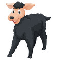 black sheep with happy face vector image vector image