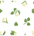 elegant seamless pattern with linden leaves and vector image