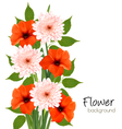 Flower summer background vector image vector image