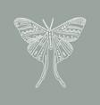 moon moth wildlife concept boho tattoo art vector image