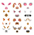video chat animal faces effects vector image