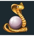Majestic Golden Cobra with pearl for your design vector image