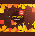 autumn super sale background with colorful vector image vector image