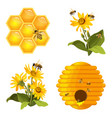 bee on honeycomb beehive nest bees on yellow vector image vector image