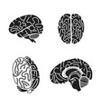 brain icon set simple style vector image