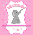 greeting card with elephant for a girl on baby vector image