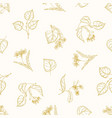 monochrome seamless pattern with linden leaves vector image vector image