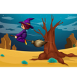 A witch riding a broom vector image vector image