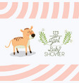 baby shower card with cute tiger vector image vector image