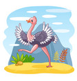 ostrich is walking along a sandy glade vector image vector image