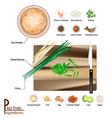 16 Ingredients Pad Thai or Stir Fried Noodles vector image vector image