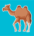 a simple camel character vector image vector image