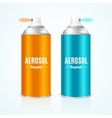 Aluminium Spray Can Template Blank vector image vector image