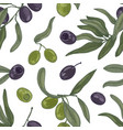 botanical seamless pattern with organic olive tree vector image vector image