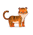 cute tiger stands on a white background vector image