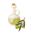 Glass bottle of premium virgin olive oil and some vector image vector image