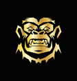 gold head gorilla vector image