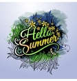 Hello Summer paint inscription vector image vector image